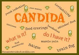 candida diet midwest sinus and allergy