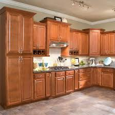 Plain Kitchen Cabinets Pictures Gallery P For Design - Kitchen cabinets photos gallery