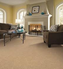 Shaw Living Area Rug Awesome Contemporary Area Rug On Carpet Living Room Full Image For