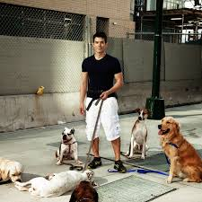 queen s dogs ryan for dogs