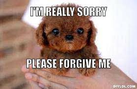 Forgive Me Meme - cute please forgive me really sorry please forgive me memes