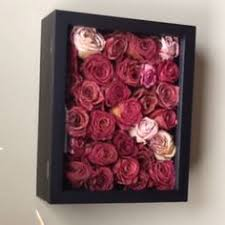 dried roses dried flower box inspiration crafts diy to try