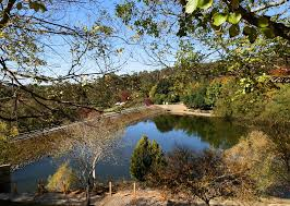 Mt Lofty Botanic Gardens Adelaide Autumn And The Mount Lofty Botanic Gardens Australia