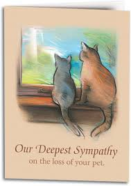 pet condolences cat themed sympathy cards smartpractice veterinary