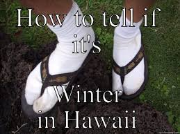 Hawaii Memes - msaloha hawaii s funny quickmeme meme collection