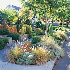 front yard sidewalk garden ideas ornamental grasses sidewalks