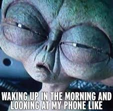 Funny Phone Memes - looking at my phone in morning funny pictures quotes memes