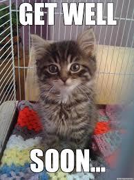 Cat Soon Meme - get better soon meme 28 images get well soon by anonfreakshow