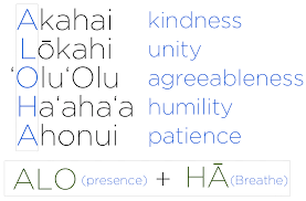 these meaning what i learned about aloha from hawaiʻi joey aquino
