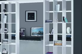 scaffale divisorio una libreria per parete stilopolis