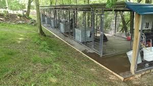 Rottweiler Dog Kennels Nashville Tennessee Rottweiler Breeders