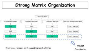 functional managers lessons learned