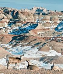 South Dakota travel plans images 63 best badlands national park images badlands jpg