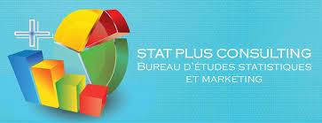 bureau des statistiques stat consulting bureau d études statistiques et marketing