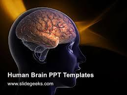 templates for powerpoint brain human brain ppt templates 1 728 jpg cb 1312942788
