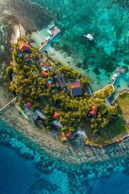 bird island belize airbnb 12 best hatchet caye resort placencia belize images on