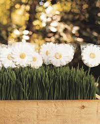 daisys birthday ma101007 sucker01 vert jpg itok u003dvu8 wjvy