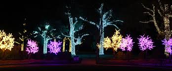 christmas lights lebanon tn plan your christmas light trip yoursumner