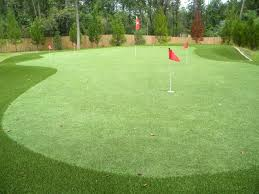 professional 6 hole houston synthetic putting green arkansas