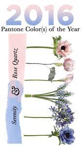 best 25 pantone 2016 ideas on pinterest rose quartz color