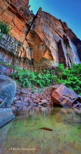 Zion National Park Thanksgiving 194 Best Zion National Park Images On Pinterest Zion National