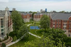 university cities a new species of city