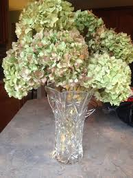 dried hydrangeas 39 best dried hydrangea arrangements images on
