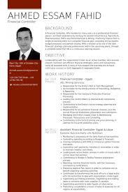 assistant controller resume samples financial controller resume samples visualcv resume samples database