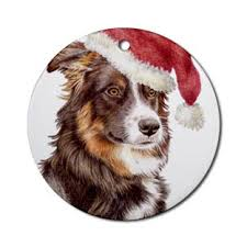 border collie dogbreed gifts com border collies and christmas