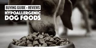top 5 best hypoallergenic dog foods buying guide and reviews