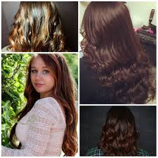 Chestnut Hair Color Pictures Amazing Gold Hair Color Ideas 2017 New Hair Color Ideas U0026 Trends