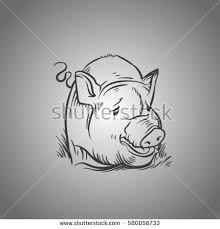 sketch pigs farm farm animals animals stock vector 377892694