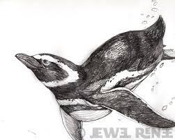 jewel renee illustration penguin pencil drawing