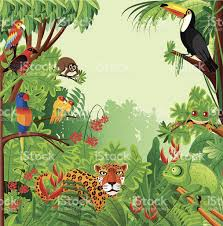 tropical rainforest stock vector art 159228404 istock
