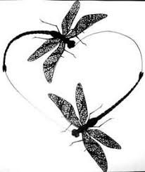 black tribal dragonfly tattoos designs