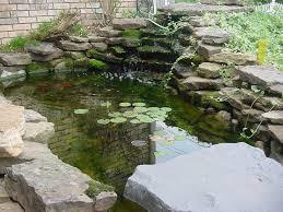 Backyard Fish Pond Kits Ideas 47 Stunning Backyard Pond Ideas Backyard Pond Waterfall