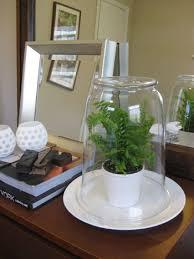 how to make a simple u0026 cheap terrarium