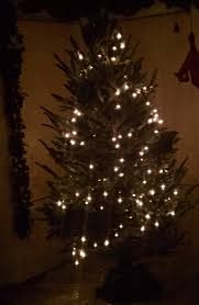 the of lighting a tree vertical vs horizontal a