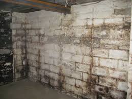 Mold On Basement Walls Cinder Block - aquaguard systems inc specialty wall coatings