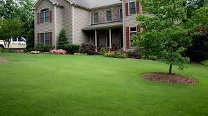 green pro lawn care program north carolina