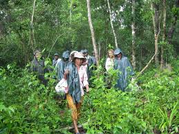women seek more influence in protecting cambodia u0027s community
