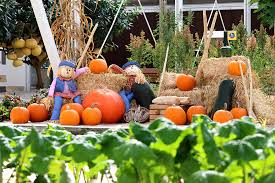 thanksgiving bounty aplenty at the land pavilion at epcot at walt