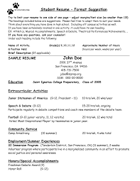 Community Service Resume Template Sample Resume For Camp Counselor Resume For Your Job Application