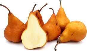 bosc pears information recipes and facts