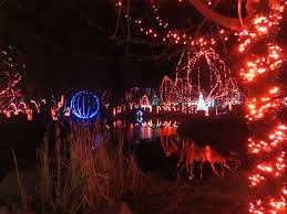 Toledo Zoo Christmas Lights by Violet U0027s Silver Lining Things To Do In Ohio Wildlights At