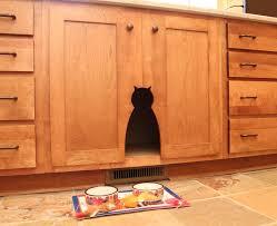 innovative hidden litter box method richmond rustic laundry room
