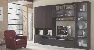 living room fresh storage wall units living room designs and