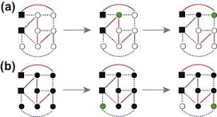 Multiplex Definition Link Overlap Viability And Mutual Percolation In Multiplex