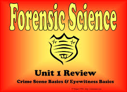 unit 1 review crime scene basics u0026 eyewitness basics ppt download