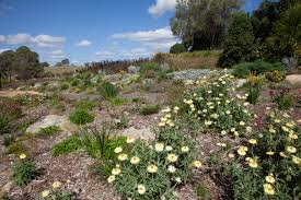 Largest Botanical Garden by Sydney In Spring The Best Gardens To Visit Ovolo Hotels